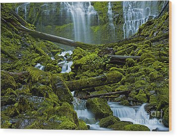 Wood Print featuring the photograph Proxy Falls by Nick  Boren