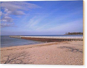 Prybil Beach Pier Wood Print by Bob Slitzan
