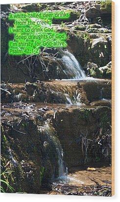Psalm 42 Wood Print