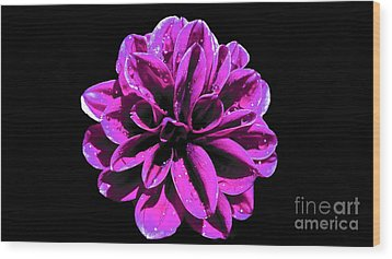 Wood Print featuring the photograph Psychedelic Flower 1 by Sarah Mullin