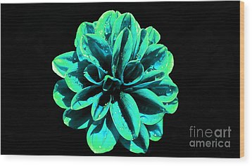 Wood Print featuring the photograph Psychedelic Flower 5 by Sarah Mullin
