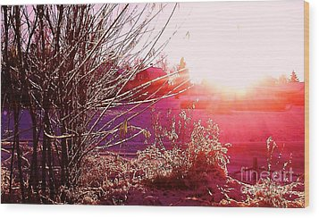 Wood Print featuring the photograph Psychedelic Winter   by Martin Howard