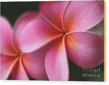 Pua Lei Aloha Cherished Blossom Pink Tropical Plumeria Hina Ma Lai Lena O Hawaii Wood Print by Sharon Mau