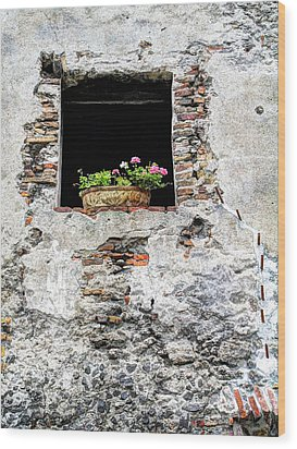 Puebla Window Flowers Wood Print