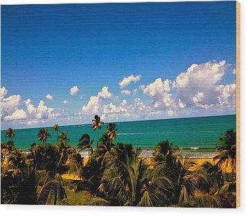 Puerto Rican Escape  Wood Print by Danielle  Broussard