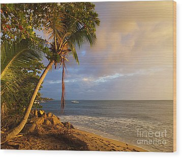 Puerto Rico Palm Lined Beach With Boat At Sunset Wood Print