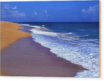 Puerto Rico Seascape Wood Print by Thomas R Fletcher