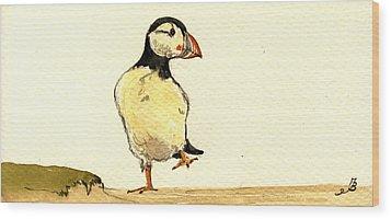 Puffin Bird Wood Print