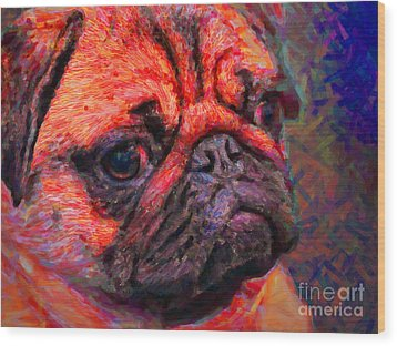 Pug 20130126v2 Wood Print by Wingsdomain Art and Photography