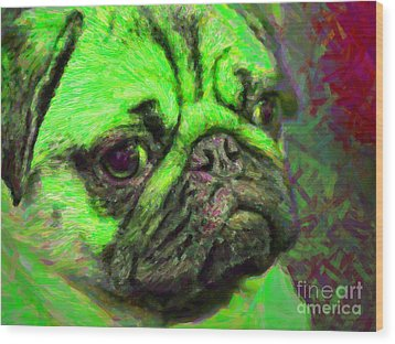 Pug 20130126v4 Wood Print by Wingsdomain Art and Photography
