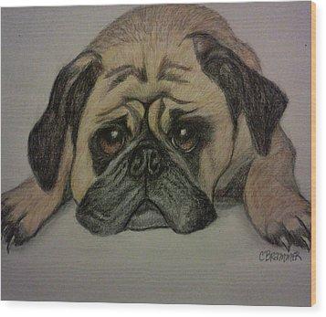 Pug Wood Print by Christy Saunders Church