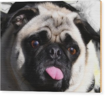 Pug Face Wood Print by Steven Digman