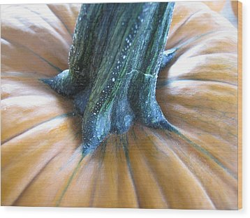 Wood Print featuring the photograph Pumpkin by Beth Vincent