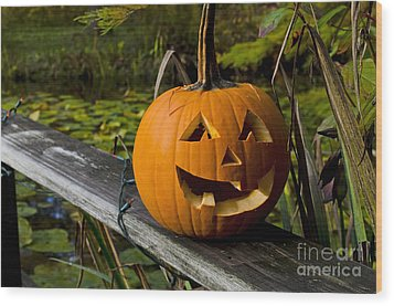 Wood Print featuring the photograph Pumpkin By The Pond by Maria Janicki