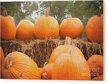 Pumpkin Fest Wood Print by Sonja Quintero