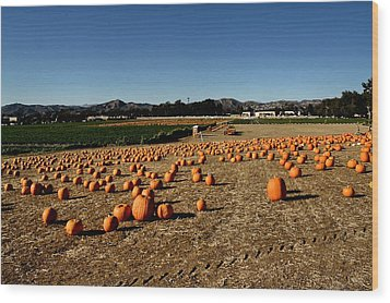 Wood Print featuring the photograph Pumpkin Field by Michael Gordon