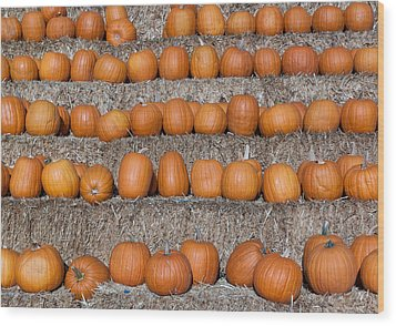 Wood Print featuring the photograph Pumpkin by Lora Lee Chapman