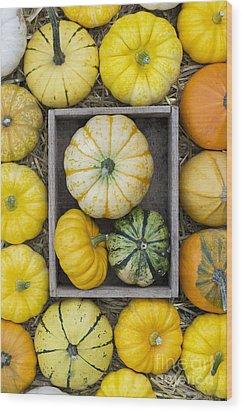 Pumpkin Pattern Wood Print by Tim Gainey