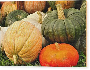 Pumpkin Pleasure Wood Print by Gene Sherrill