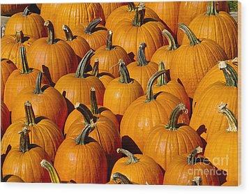 Pumpkins Wood Print by Anthony Sacco
