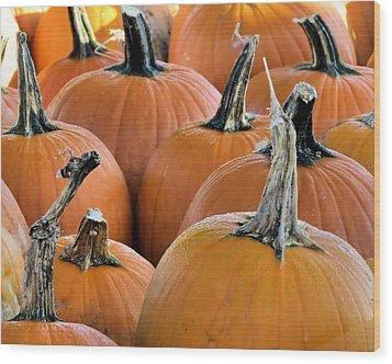 Pumpkins Wood Print by Janice Drew