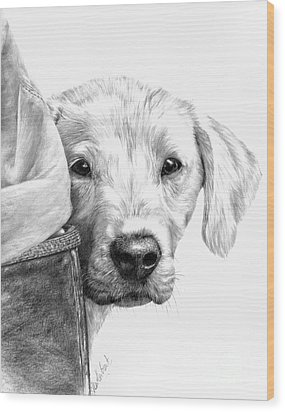 Puppies And Wellies Wood Print by Sheona Hamilton-Grant