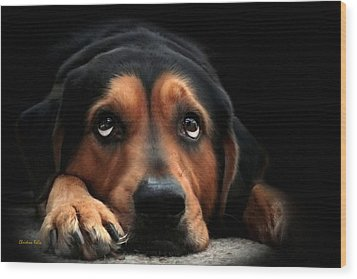 Wood Print featuring the mixed media Puppy Dog Eyes by Christina Rollo