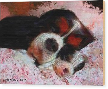 Puppy Love Wood Print by Bruce Nutting