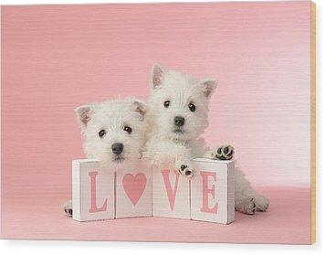 Puppy Love Wood Print by Greg Cuddiford