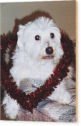 Puppy Love Valentine Wood Print by Eddie Eastwood