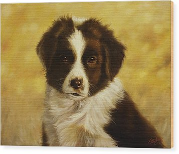 Puppy Portrait Wood Print by John Silver
