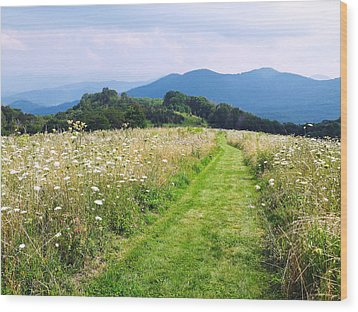 Purchase Knob Wood Print by Melinda Fawver