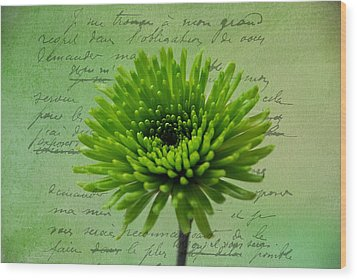 Wood Print featuring the photograph Pure Green 2 by Linda Segerson