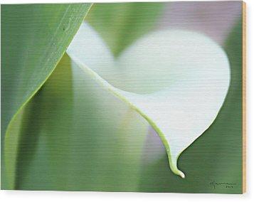 Pure Heart Wood Print by Kume Bryant