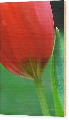 Pure Wood Print by Kathy Yates