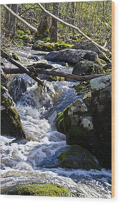 Pure Mountain Stream Wood Print by Bill Cannon