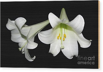 Wood Print featuring the photograph Pure White Easter Lilies by Rose Santuci-Sofranko