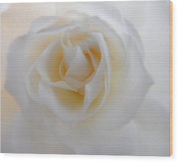 Wood Print featuring the photograph Purity by Deb Halloran