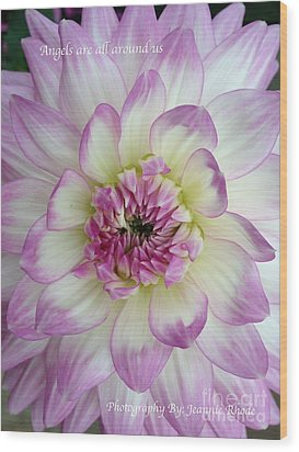 Wood Print featuring the photograph Purple And Cream Dahlia by Jeannie Rhode