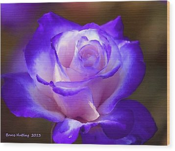 Purple And Pink Rose Wood Print by Bruce Nutting