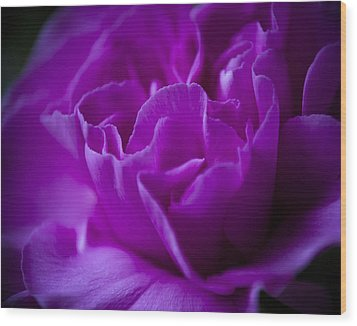 Purple Beauty Wood Print by Ron Roberts