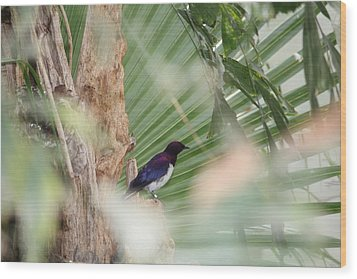 Purple Birs In Trees Wood Print
