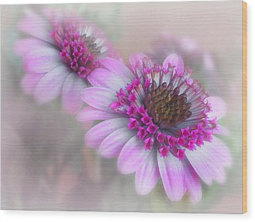 Purple Blooms Wood Print by David and Carol Kelly