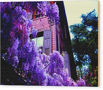Wood Print featuring the photograph Purple Cheer by Zafer Gurel