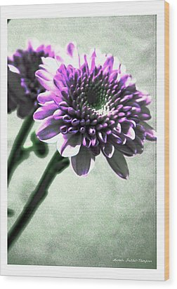 Purple Chrysanthemum Wood Print by Michelle Frizzell-Thompson