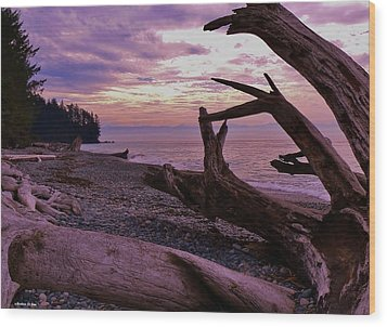 Wood Print featuring the photograph Purple Dreams In Bc by Barbara St Jean
