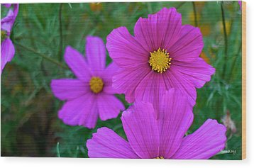 Wood Print featuring the photograph Purple Flower by Alex King
