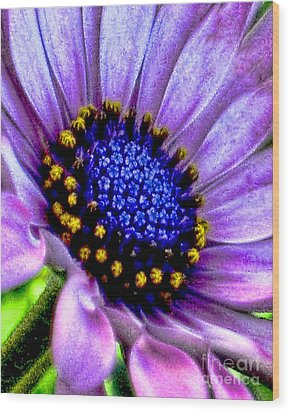 Purple Flower Sensation Wood Print