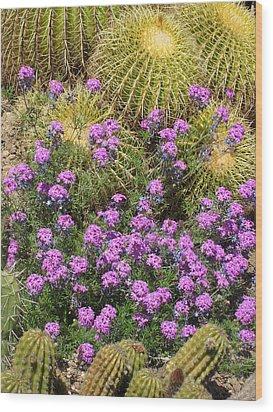 Purple Flowers And Barrel Cacti Wood Print