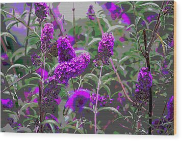 Wood Print featuring the photograph Purple Flowers by Suzanne Powers